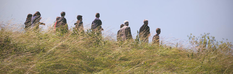 Groepscoaching op locatie in de natuur